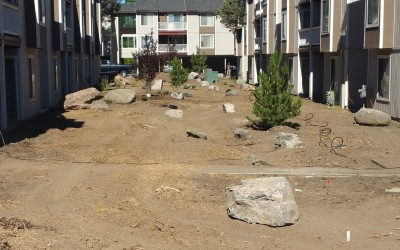 Apartment Community Landscape Renovation – Phase II Trees and Boulders