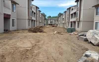 Apartment Community Landscape Renovation – Phase I Demo
